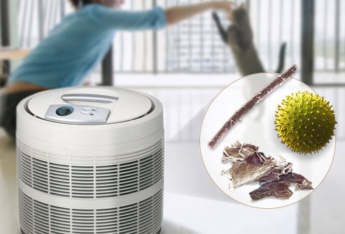 10 Questions About HEPA Air Purifiers